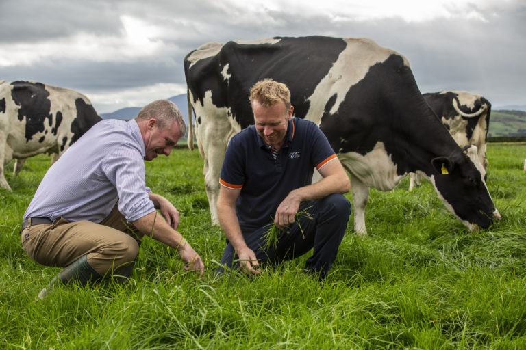 NDC launches new ad campaign celebrating Irish dairy farmer's resilience
