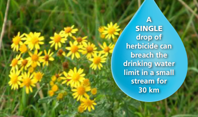 Pesticide detections continue in Cork this year – farmers and other users reminded to use best practice when spraying