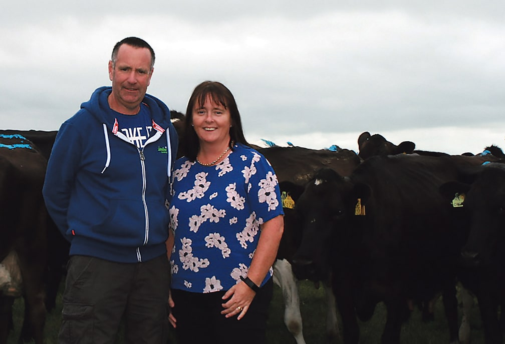 A West Cork Farm experience