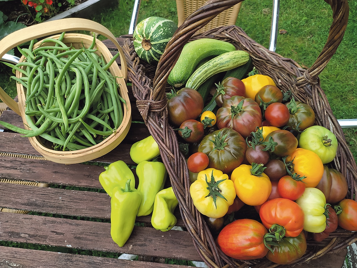 Mixed weather conditions bode well for autumn glut in the garden