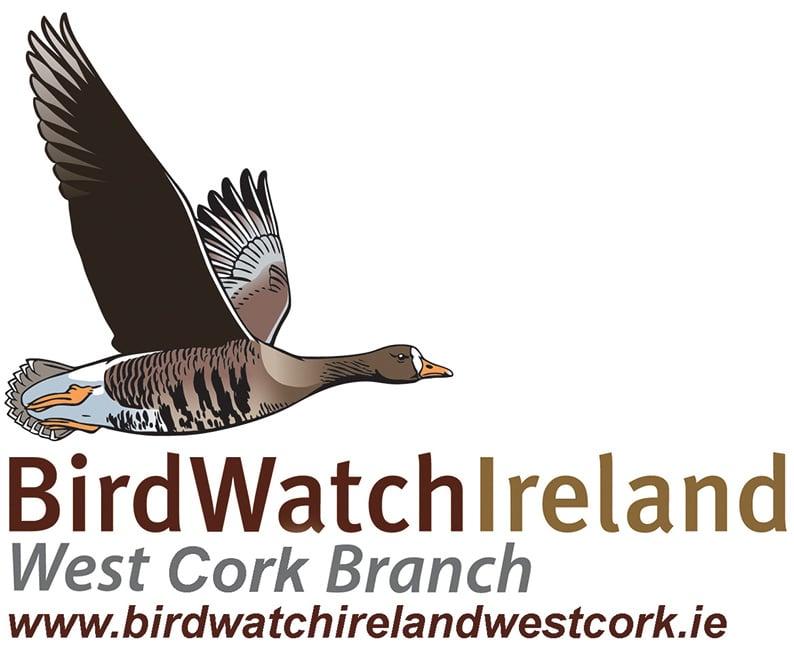 Feeding garden birds and the Irish Garden Bird Survey