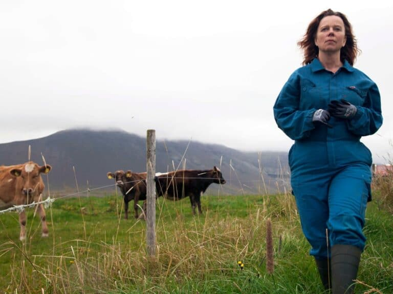 Clon Film Club offers some comedic relief with 'The County' from Iceland