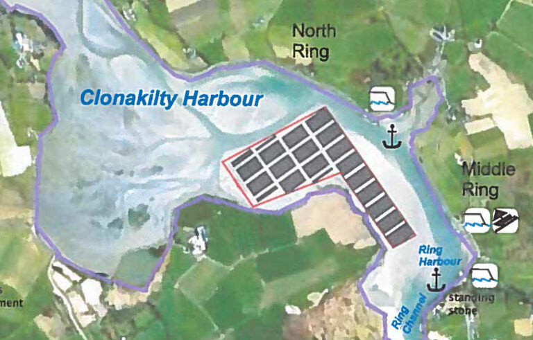 Oyster farm proposed for Clonakilty could pose serious threat to ecosystem
