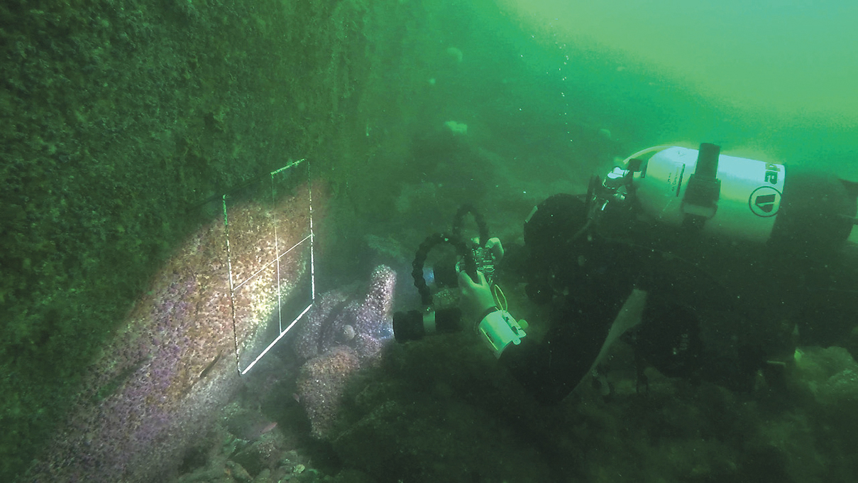 Researchers plumb the depths to solve Lough Hyne mystery