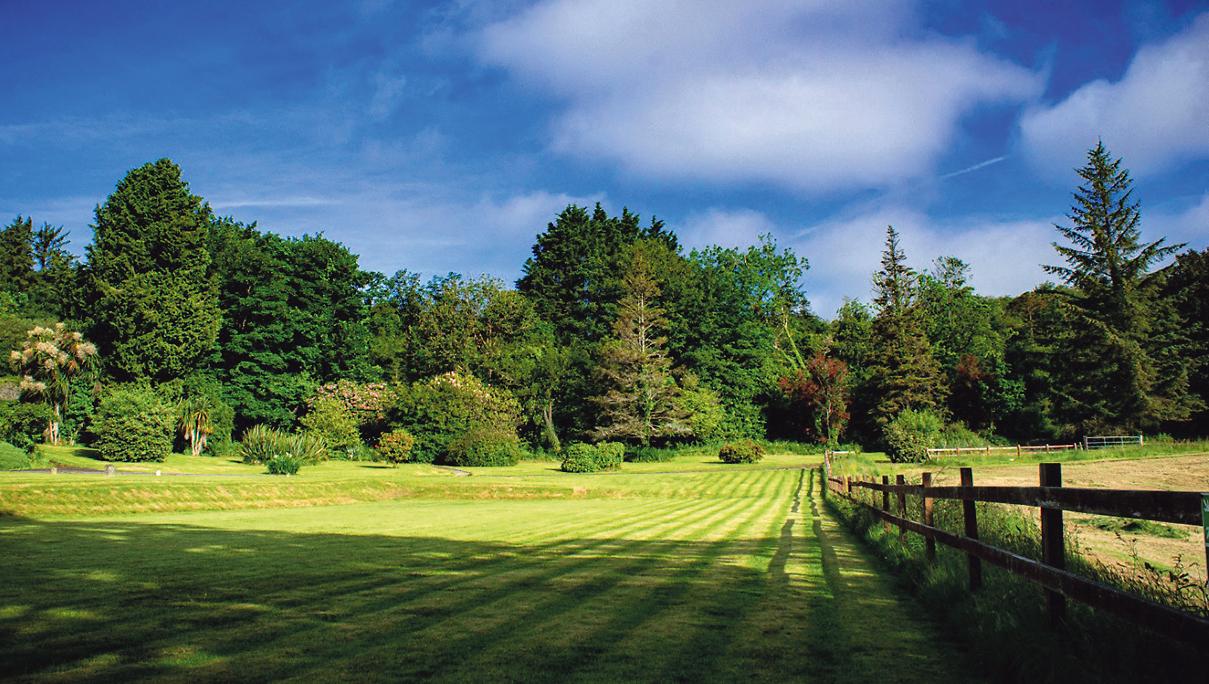 Green Skibbereen secure woodland funding for restoration of historic Myross Wood